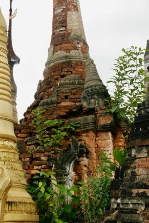 Bewachsene Stupa in Indein
