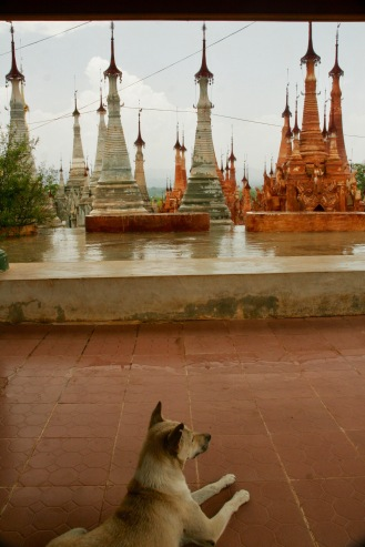 Blick auf die Stupas in Indein