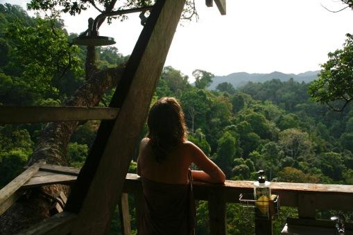 Blick über den Regenwald von der Dusche aus