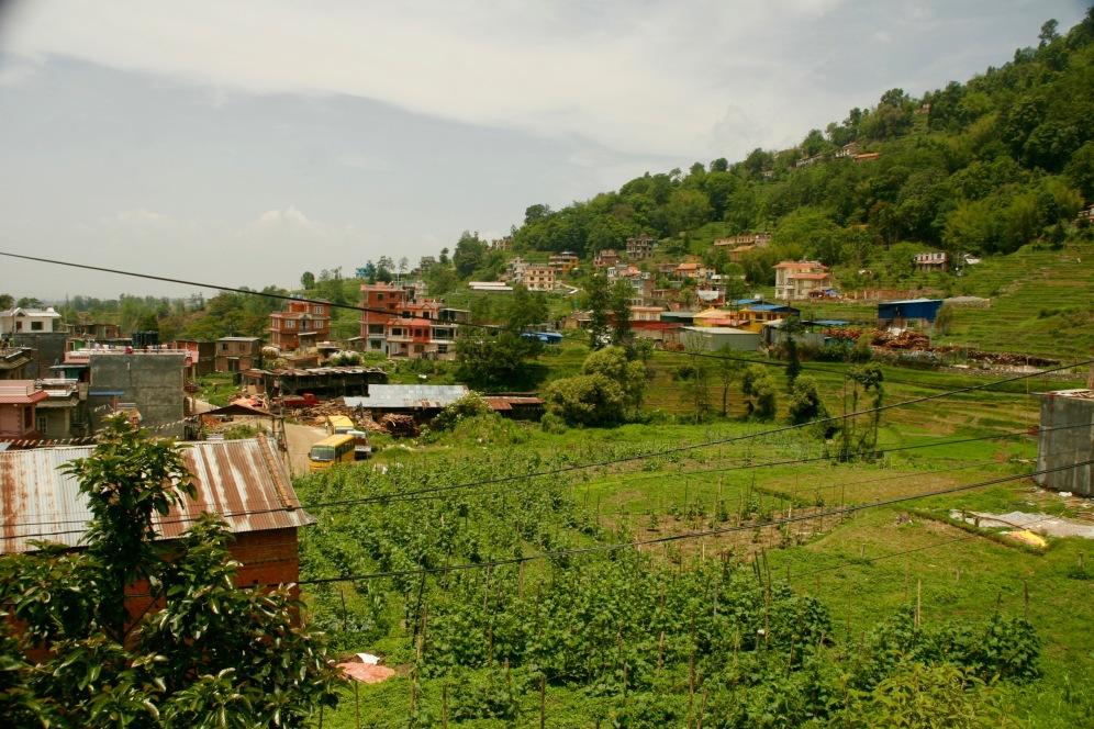Blick über die Felder vom Niru Yoga Retreat Homestay