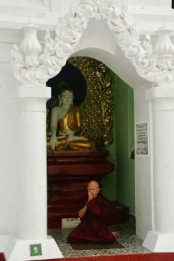 Mönch betet in der Shwedagon Pagode