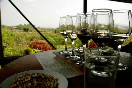 Verkostung von burmesischem Wein bei der Red Mountain Winery Estate