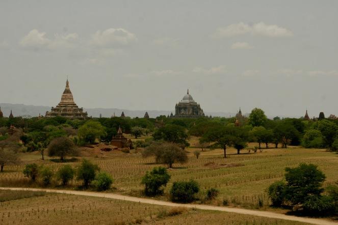 Weitläufiger Blick über Bagan vom Myauk Guni Paya