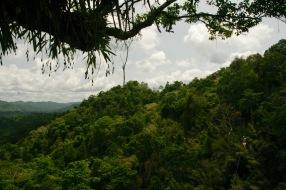 Ziplinen über den Baumkronen im Norden Laos'