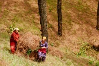Zwei Frauen arbeiten auf den Feldern