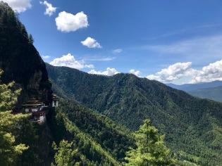 Blauer Himmel, Wald Wald Wald und das Tigernest