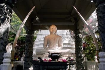 Buddha aus Jade im Gangaramaya Tempel