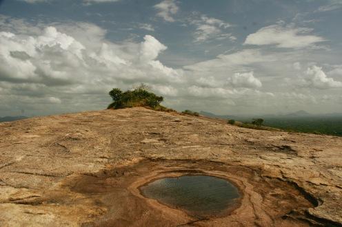 Überwältigt von der Schönheit der Natur in Sri Lanka