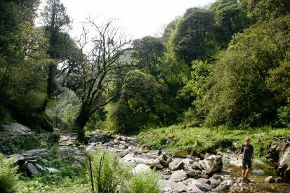 Der gesamte Poon Hill Trek führt immer wieder vorbei an glasklaren eisigen Bächen und Quellen