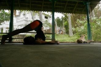 Die Körper werden immer flexibler