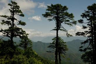 Dochula Pass mit leichtem Blick auf schneebedeckte Himalaya Berge