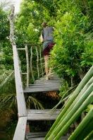 Durch den Dschungel in unser eigenes Baumhaus