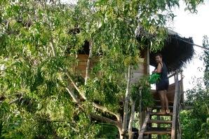 Eingang zu unserem wunderschönen Baumhaus in Tangalle