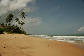 Einsamer Strand bei Tangalle