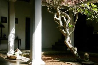 Innenhof der Villa de Zoysa