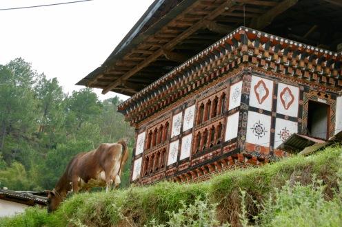 Kleine Dörfchen im Punakha Tal in Bhutan