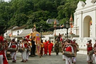 Schwer anzusehen - arme Eelefanten werden in die Zeremonie eingebunden