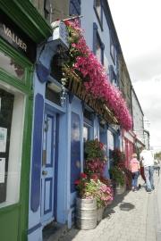 Blumen über Blumen in Kilkenny