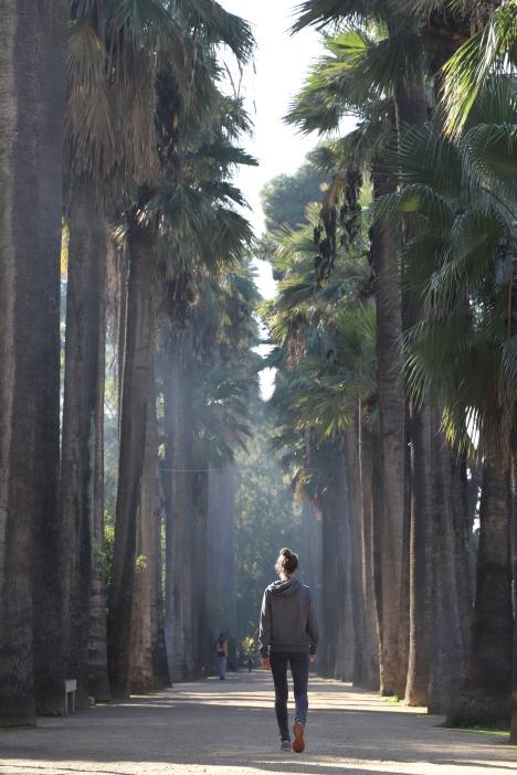 Fès - Parc de Boujloud