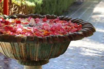 Marrakesh - Anima Garden mit Rosenbecken