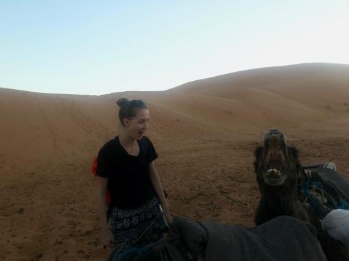 Sahara Tour - große Klappe...