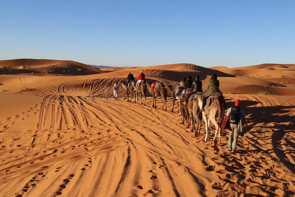 Sahara Tour - Kamelkarawane