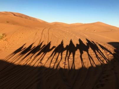 Sahara Tour - lange Schatten am Abend in der Sahara