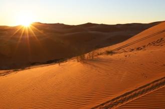 Sahara Tour - Sonnenaufgang in der Sahara