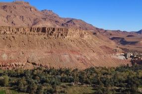 Sahara Tour - Unmengen an Dattelpalmen im Todra Tal