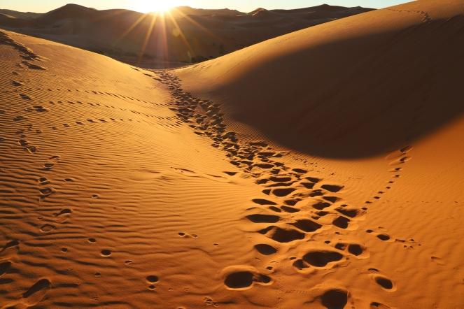 Sahara Tour - wunderbarer Anblick in der Sahara