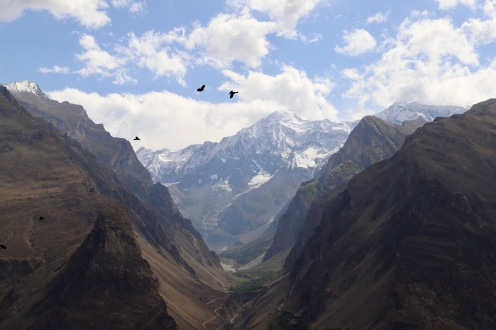 Der Berg Diran umhüllt von Wolken
